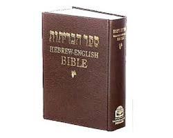 Understanding Biblical Hebrew through Biblical text
