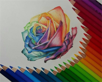 Darien Arts Center Colored Pencil Drawing Wednesday Spring 2020 Online Registration