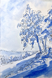 Darien Arts Center Drawing With Nancy Pen And Ink With Landscape Drawing Adult Online Registration